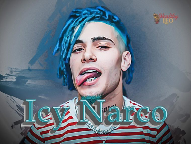 icy narco